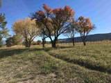 944 48 1/2 Road - Photo 8