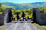 (Parcel 2) TBD Highway 65 - Photo 1