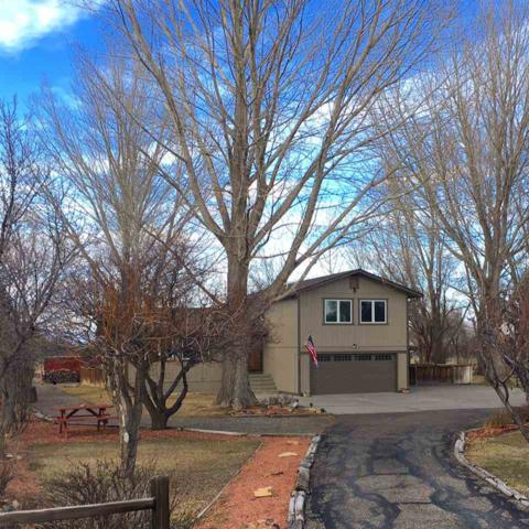 62159 Charolais Drive, Montrose, CO 81403 (MLS #20171339) :: The Grand Junction Group