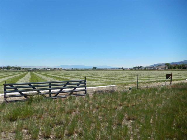 1301 M Road, Loma, CO 81524 (MLS #20172635) :: Keller Williams CO West / Mountain Coast Group
