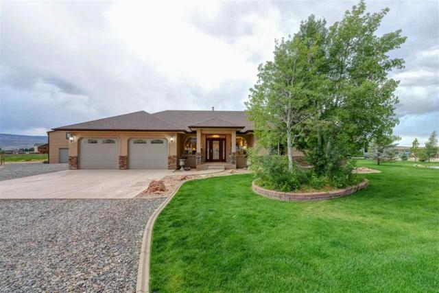 1423 14 Road, Loma, CO 81524 (MLS #20172767) :: Keller Williams CO West / Mountain Coast Group