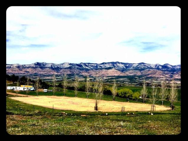 57191 Me Road, Collbran, CO 81624 (MLS #20172811) :: The Christi Reece Group