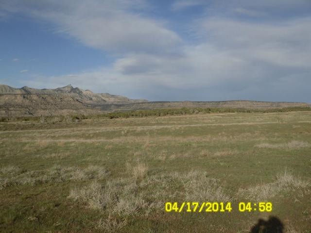 4576 Horse Canyon Road, De Beque, CO 81630 (MLS #20172820) :: Keller Williams CO West / Mountain Coast Group