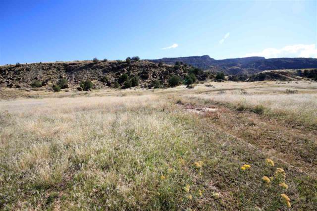 TBD 45 1/2 Road, De Beque, CO 81630 (MLS #20172861) :: Keller Williams CO West / Mountain Coast Group
