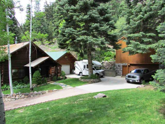 154 Loretta Court, Ouray, CO 81427 (MLS #20172902) :: The Christi Reece Group