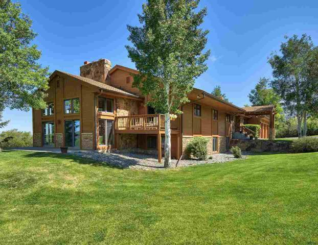 7040 Highway 65, Mesa, CO 81643 (MLS #20172992) :: The Christi Reece Group