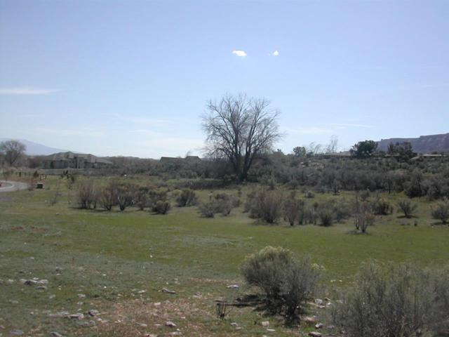 726 Curecanti Circle, Grand Junction, CO 81507 (MLS #20172994) :: The Christi Reece Group
