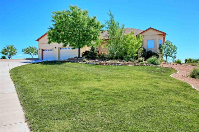 1307 Gold Lake Drive, Loma, CO 81524 (MLS #20173144) :: Keller Williams CO West / Mountain Coast Group