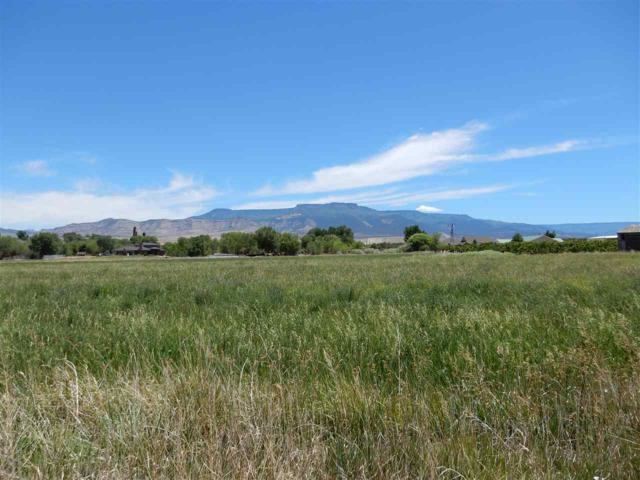3427 D Road, Palisade, CO 81526 (MLS #20173156) :: The Christi Reece Group