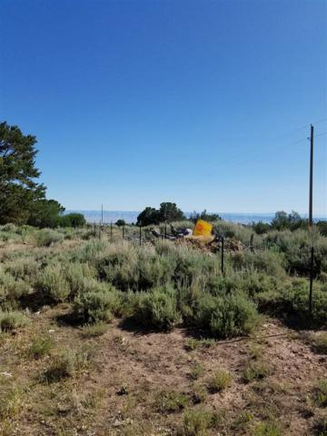 17942 Mabie Flats Road, Glade Park, CO 81503 (MLS #20173651) :: The Christi Reece Group
