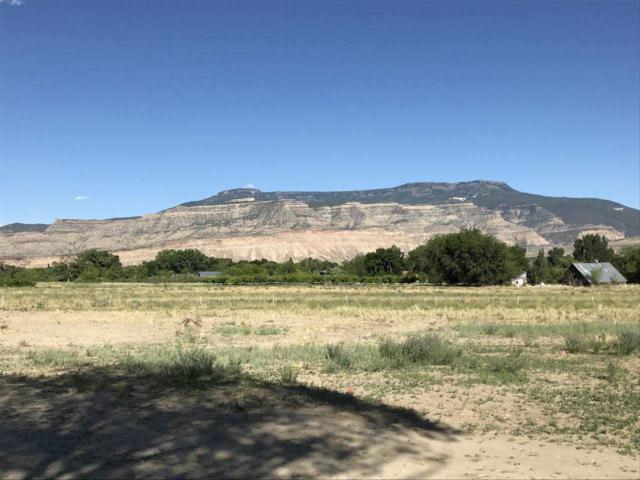 780 35 8/10 Road, Palisade, CO 81526 (MLS #20173717) :: The Christi Reece Group