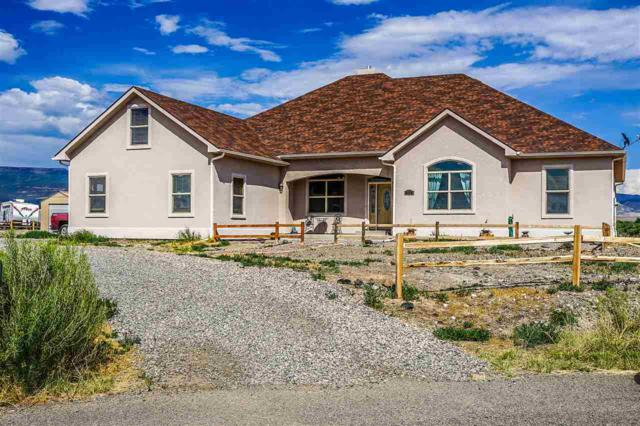 6220 La Paloma Court, Whitewater, CO 81527 (MLS #20173748) :: The Christi Reece Group