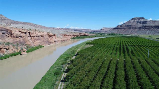 2444 Dominguez Canyon Road, Delta, CO 81416 (MLS #20174125) :: The Grand Junction Group