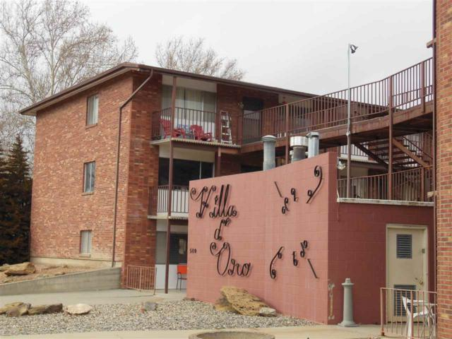 580 Bookcliff Avenue #22, Grand Junction, CO 81501 (MLS #20174231) :: The Grand Junction Group