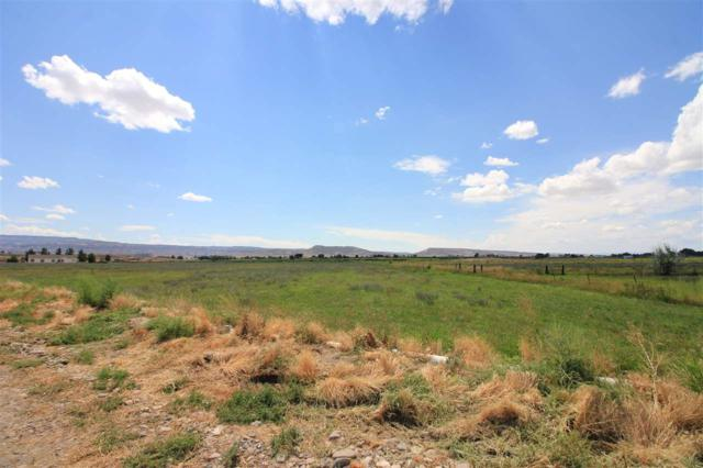 1465 14 Road, Loma, CO 81524 (MLS #20174233) :: The Christi Reece Group