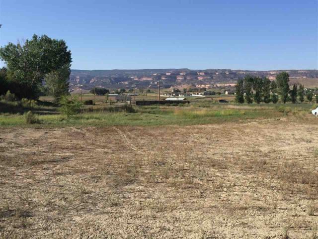 1332 M Road, Loma, CO 81524 (MLS #20174397) :: Keller Williams CO West / Mountain Coast Group