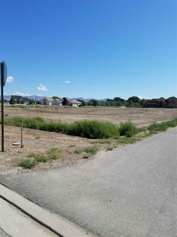 808 Mease Road, Grand Junction, CO 81505 (MLS #20174413) :: Keller Williams CO West / Mountain Coast Group