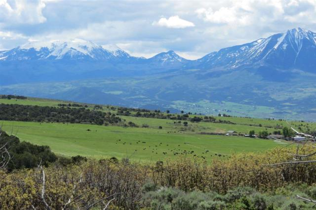 37248 S Road, Paonia, CO 81428 (MLS #20174475) :: The Christi Reece Group