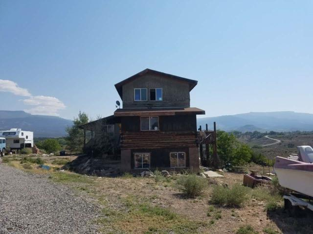 8601 Reeder Mesa Road, Whitewater, CO 81527 (MLS #20174732) :: The Christi Reece Group