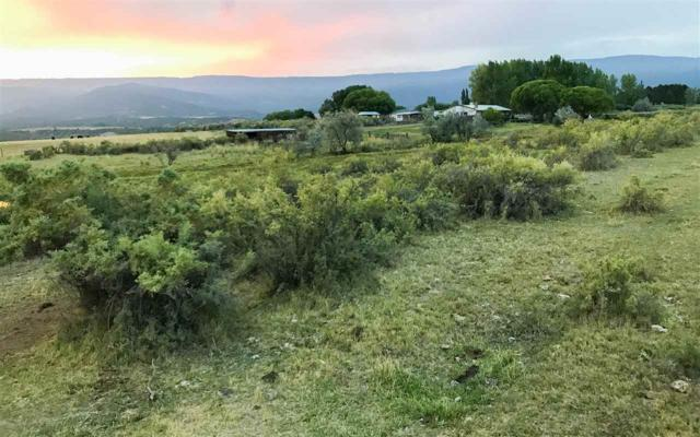 TBD Bull Mesa Road, Cedaredge, CO 81413 (MLS #20174771) :: The Grand Junction Group