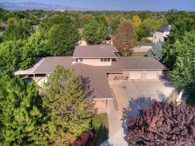 3695 Ridge Drive, Grand Junction, CO 81506 (MLS #20174773) :: The Christi Reece Group