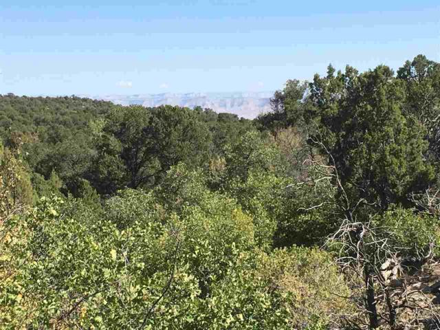 TBD Miller Canyon Ranch Road, Glade Park, CO 81523 (MLS #20175000) :: The Christi Reece Group