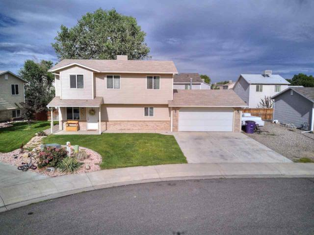 505 Rosin Court, Clifton, CO 81520 (MLS #20175026) :: The Grand Junction Group