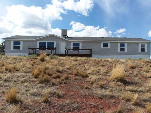 16020 Elk Drive, Glade Park, CO 81523 (MLS #20175063) :: The Grand Junction Group