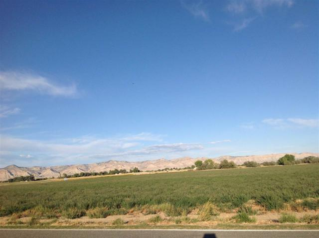 TBD-42 acres 21 Road, Grand Junction, CO 81505 (MLS #20175111) :: The Christi Reece Group