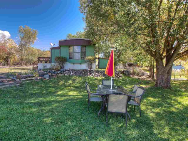 3065 Orchard Avenue, Collbran, CO 81624 (MLS #20175290) :: The Grand Junction Group