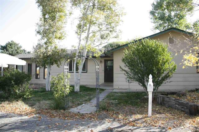 326 Apache Drive, Grand Junction, CO 81503 (MLS #20175375) :: CapRock Real Estate, LLC