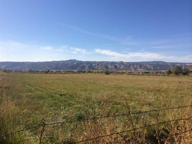 1899 J 6/10 Road, Fruita, CO 81521 (MLS #20175429) :: Keller Williams CO West / Mountain Coast Group