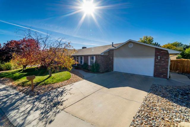 3501 N 15th Street, Grand Junction, CO 81505 (MLS #20175460) :: The Christi Reece Group