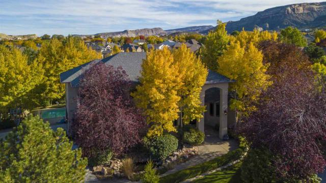 2145 Vista Cascada Court, Grand Junction, CO 81507 (MLS #20175485) :: Keller Williams CO West / Mountain Coast Group