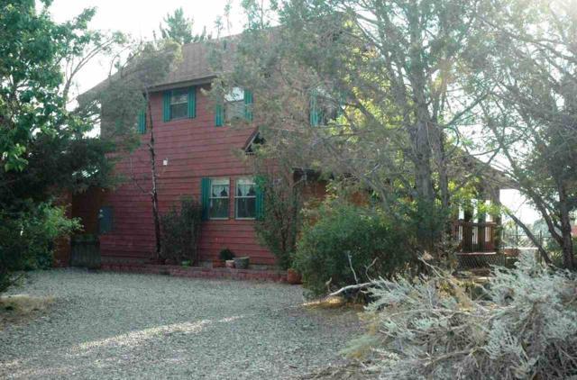 521 NE Ginters Grove Lane, Cedaredge, CO 81413 (MLS #20175573) :: The Grand Junction Group