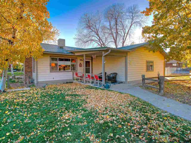 738 36 3/10 Road, Palisade, CO 81526 (MLS #20175594) :: The Grand Junction Group