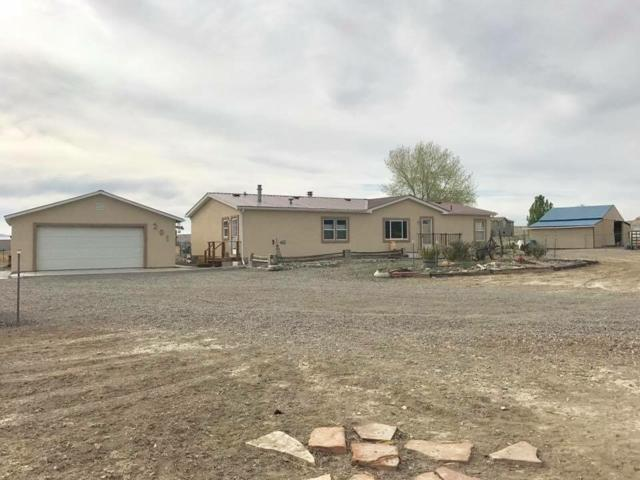 201 Cutting Court, Whitewater, CO 81527 (MLS #20175694) :: The Christi Reece Group