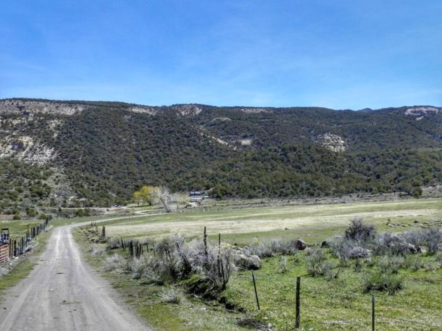 8672 Highway 65, Mesa, CO 81643 (MLS #20175834) :: The Grand Junction Group