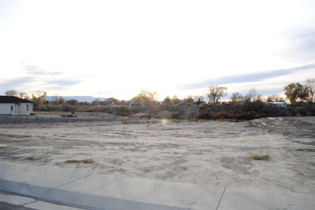 2605 Liberty Lane, Grand Junction, CO 81506 (MLS #20175846) :: The Christi Reece Group