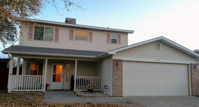 3191 Brook View Way, Grand Junction, CO 81504 (MLS #20175879) :: The Christi Reece Group