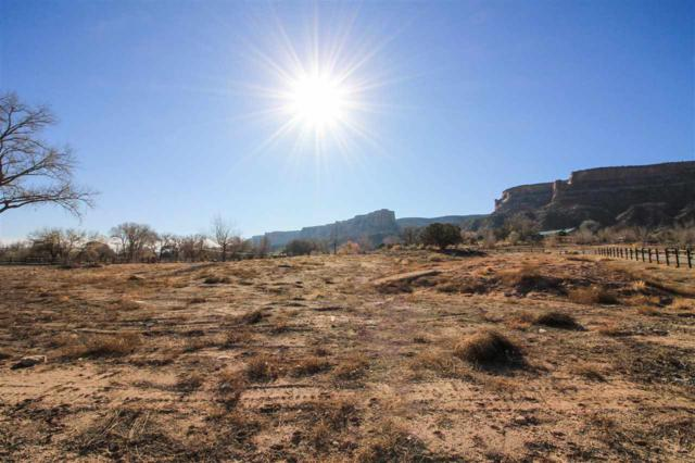 1950 Stone Canyon Court, Grand Junction, CO 81507 (MLS #20176066) :: The Christi Reece Group