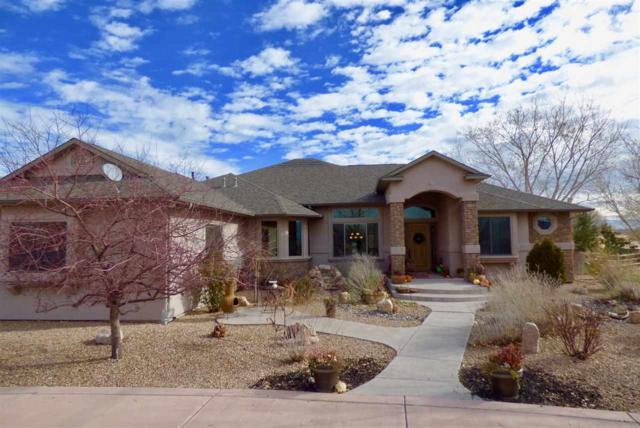 1007 Pritchard Mesa Court, Grand Junction, CO 81505 (MLS #20176095) :: The Christi Reece Group