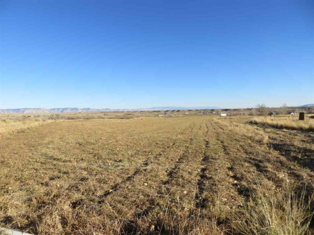 906 S Road, Mack, CO 81525 (MLS #20176124) :: The Grand Junction Group