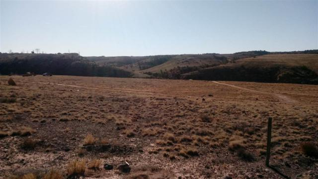 1155 Siminoe Road, Whitewater, CO 81527 (MLS #20176131) :: CapRock Real Estate, LLC