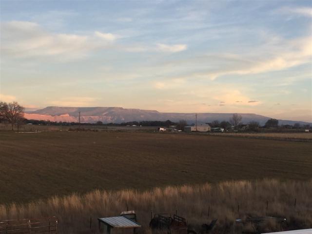 1331 19 Road, Fruita, CO 81521 (MLS #20176149) :: Keller Williams CO West / Mountain Coast Group