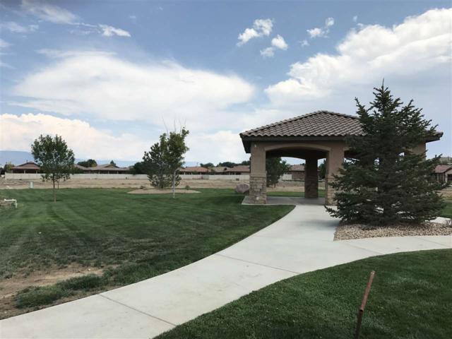 2841 Trevor Mesa Drive, Grand Junction, CO 81503 (MLS #20176225) :: CapRock Real Estate, LLC
