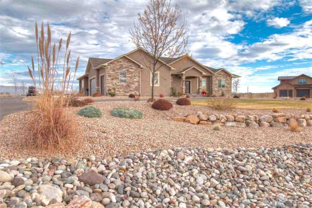 1004 Dougherty Court, Grand Junction, CO 81505 (MLS #20180268) :: The Christi Reece Group