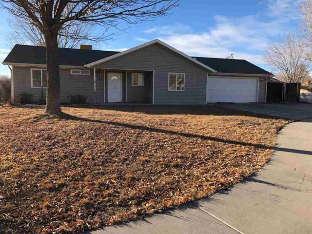 1121 Ironwood Court, Fruita, CO 81521 (MLS #20180373) :: The Grand Junction Group
