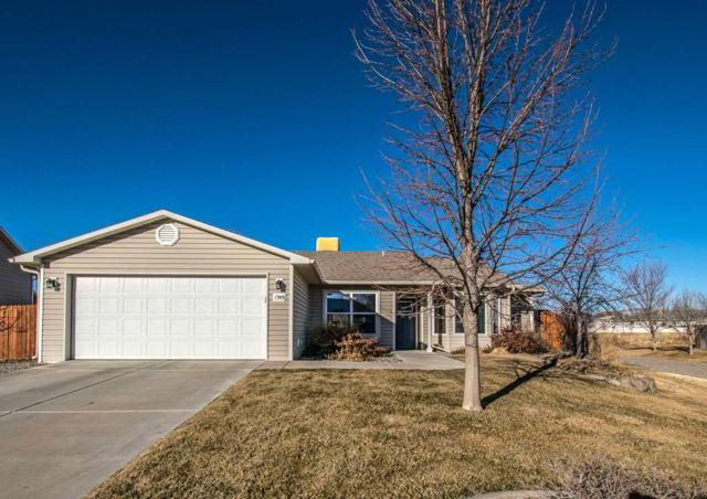 1393 E Carolina Avenue, Fruita, CO 81521 (MLS #20180390) :: The Christi Reece Group