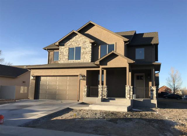 1437 Catalina Avenue, Fruita, CO 81521 (MLS #20180406) :: The Christi Reece Group